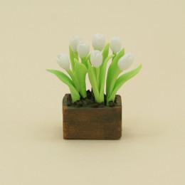 Тюльпаны для кукол в ящике белые