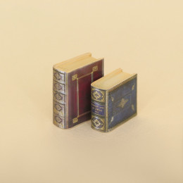 Набор книг для кукольного домика 100275
